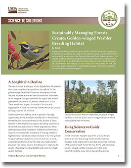 Golden Winged Warbler Report Cover Thumbnail