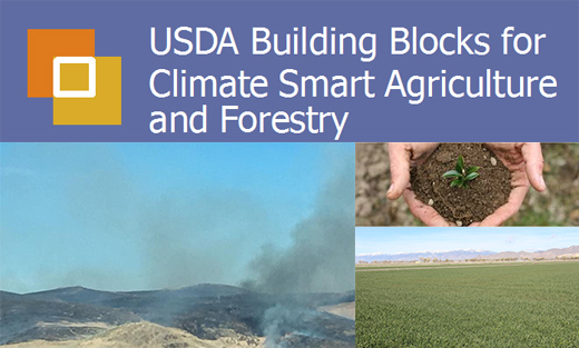 USDA's Building Blocks for Climate Smart Agriculture and Forestry