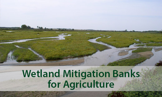 NRCS is investing more than $7 million to fund agricultural wetland mitigation banks in 10 Midwestern and Northern Great Lakes states.