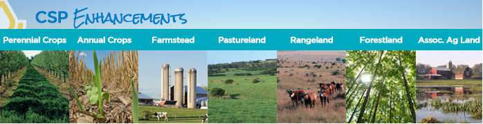 Choose your land use for CSP.