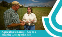 chesapeake bay report update 09082016
