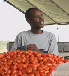 Moses Momanyi knew a lot about farming when he immigrated to America from Kenya, but MFA taught him the logistics of bringing produce to market. Image taken from Minnesota Food Association video.