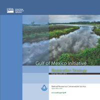 gulf of mexico restoration strategy cover