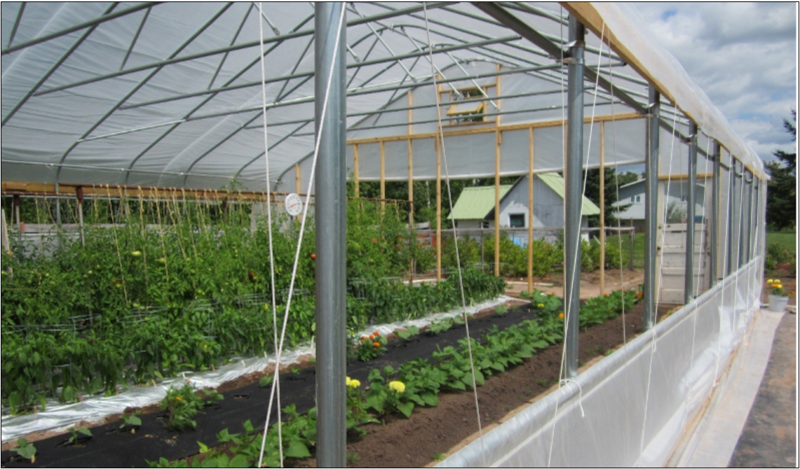 high tunnels and hoop houses
