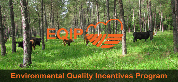 Environmental Quality Incentives Program banner