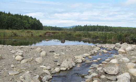 View of completed South Branch Lake project in central Maine