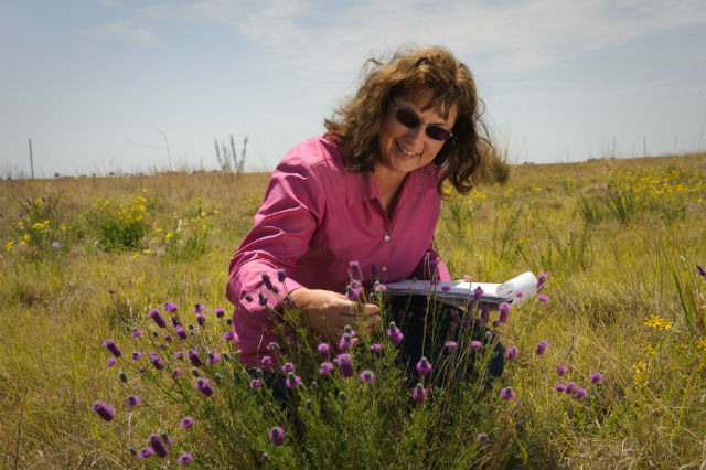 NRCS employees help producers establish buffers with a variety of plants that supplement both wildlife and pollinators.