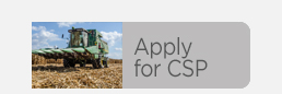 Apply for CSP
