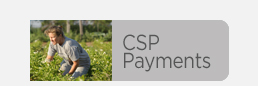 CSP Payments