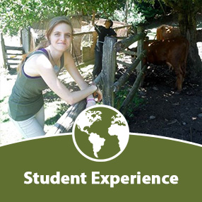 Click here for Student Experience