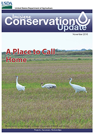 November 2016 Conservation Update Cover
