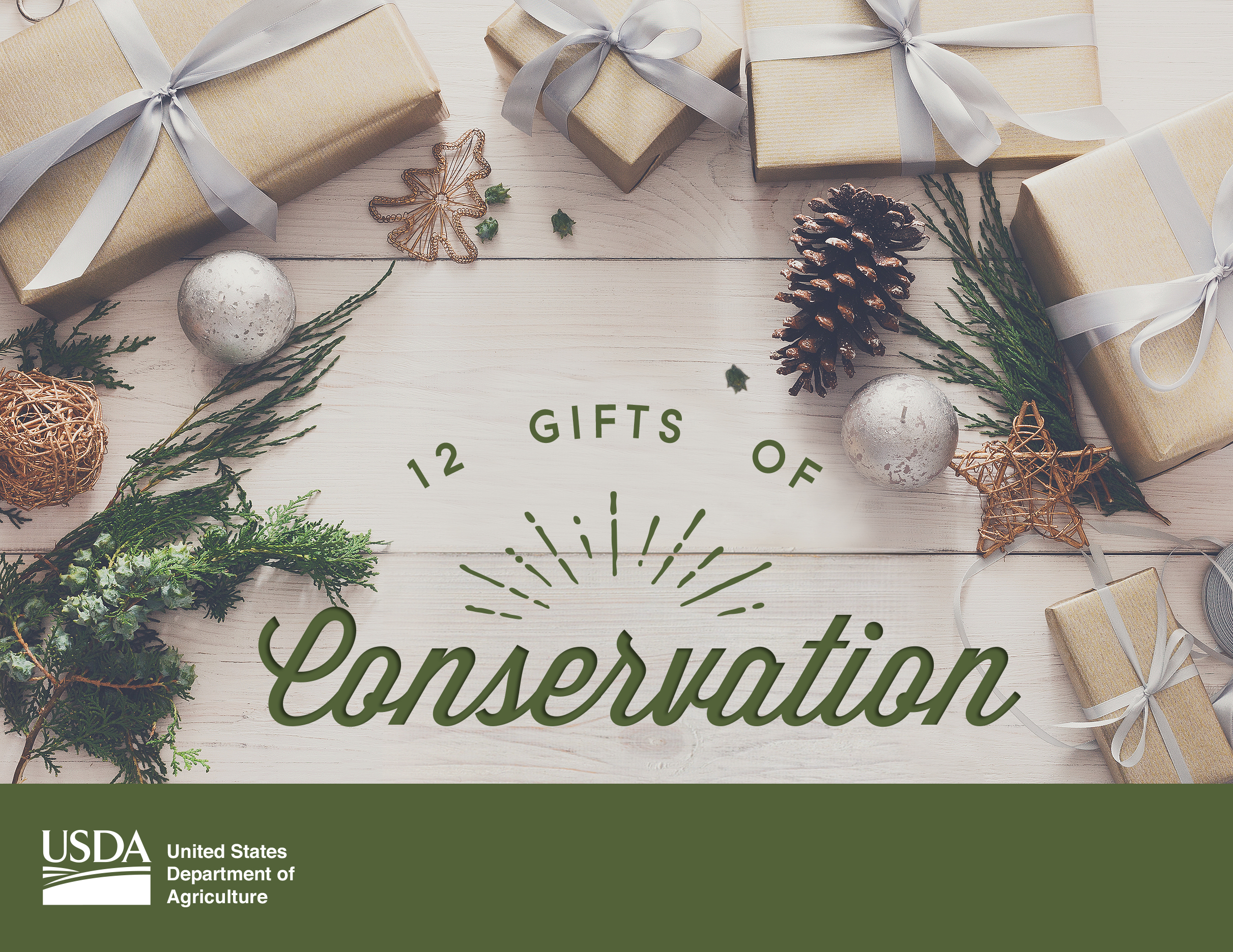 12 Gifts of Conservation