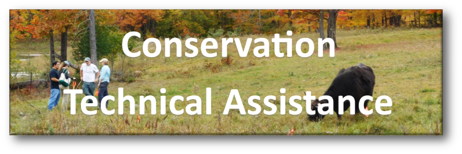 Conservation Technical Assistance