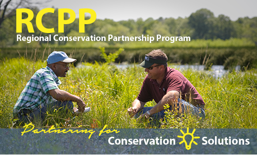 NRCS Announces Webinar about RCPP Project Applications