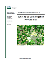 Cover image of What to do With Irrigation Pivot Corners? publication