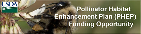 Pollinator Habitat Enhancement Plan (PHEP) Funding Opportunity