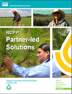 RCPP partner Solutions Publication Cover