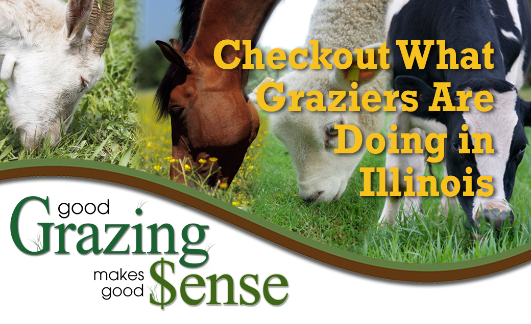 Good Grazing Makes Good Sense - Checkout What Graziers are Doing in Illinois