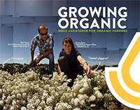 Growing Organic brochure