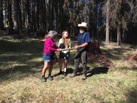 Tree, Lydia, and John discussing bark beetle patterns on a piece of fallen wood.