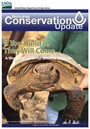 February 2017 Conservation Update Cover