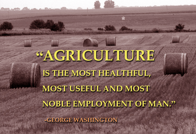 Farmer Quotes Enchanting George Washington The Farmer NRCS