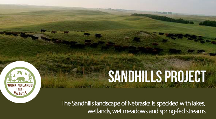 Sandhills Project Header