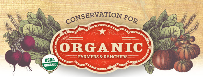 Conservation for Organic Farmers & Ranchers