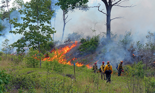 A fire crew conducts a prescribed burn at the East Quabbin Land Trust's Frohloff Farm in Ware, Massachusetts.