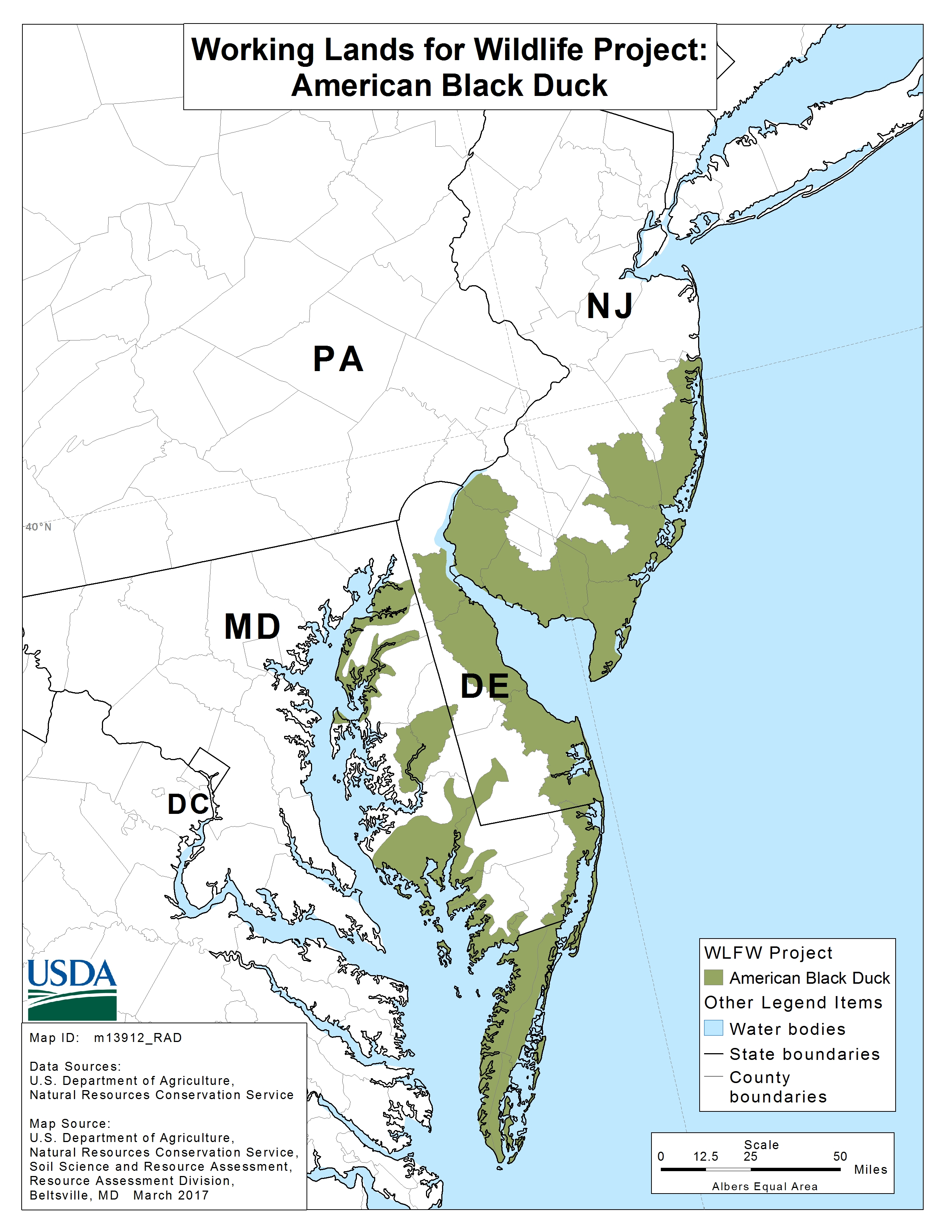 American black duck nrcs virginia american black duck target area map gumiabroncs Images