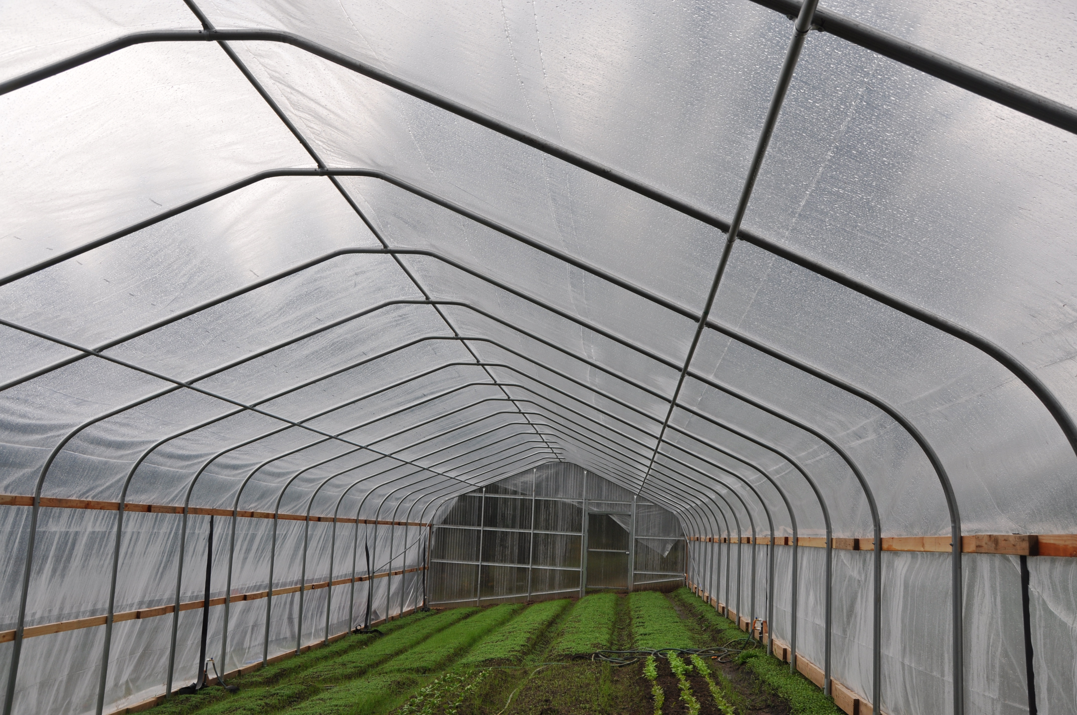 : A seasonal high tunnel installed with financial assistance from NRCS. Photo: Tracy Robillard.