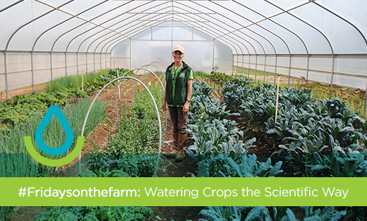 FOTF Science Watering Homepage feature