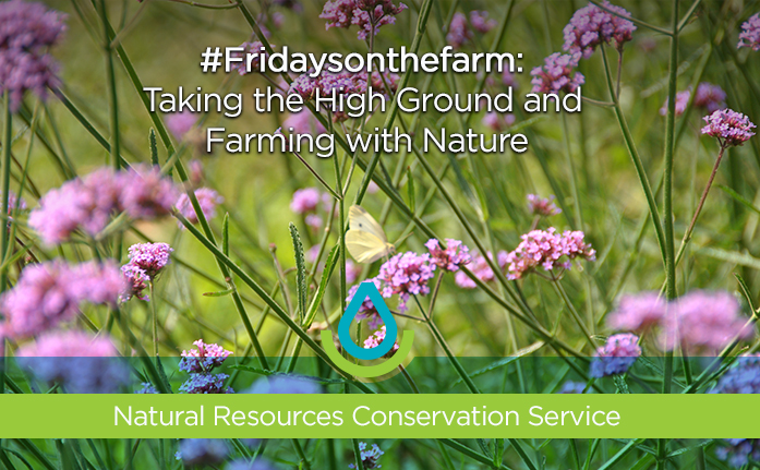 #Fridaysonthefarm: Taking the High Ground and Farming with Nature Web Header
