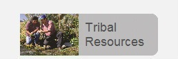 Tribal Resources
