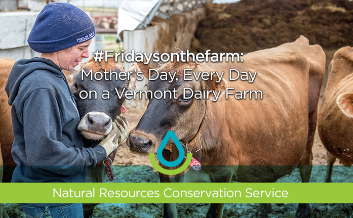 #Fridaysonthefarm: Mother's Day, Every Day Web Header