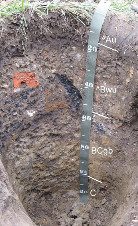 This is a soil profile of Midtown. NRCS photo.
