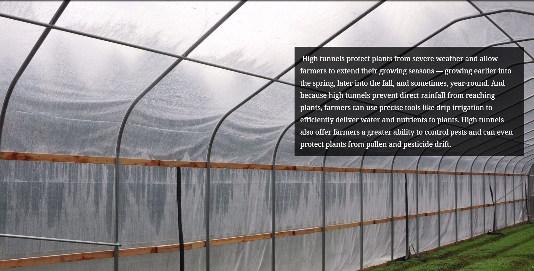 High tunnels protect plants from severe weather and allow farmers to extend their growing seasons —   growing earlier into the spring, later into the fall, and sometimes, year-round. And because high tunnels   prevent direct rainfall from reaching plants, farmers can use precise tools like drip irri