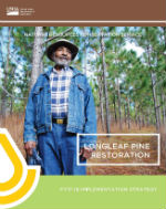 longleaf pine initiative 2017 strategy cover thumbnail