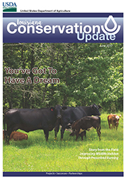 June Conservation Update Cover