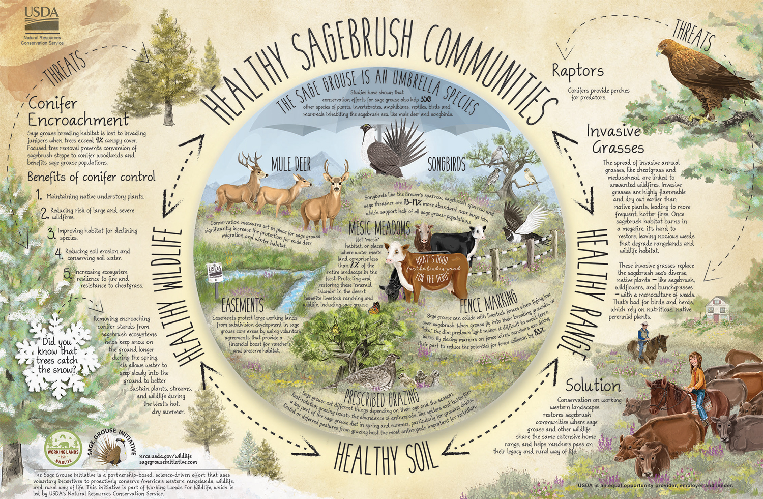 Healthy Sagebrush Communities Poster