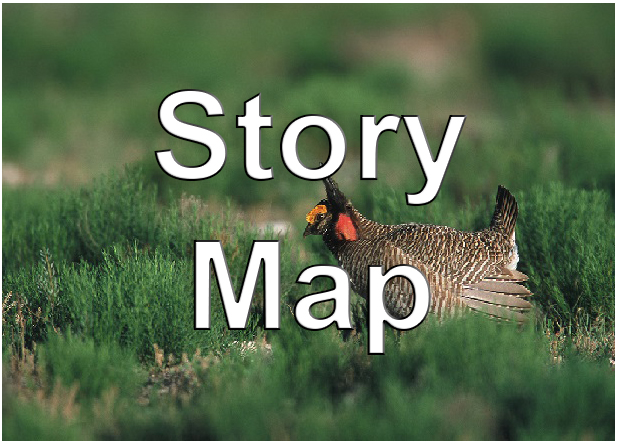 CEAP Wildlife Story Map