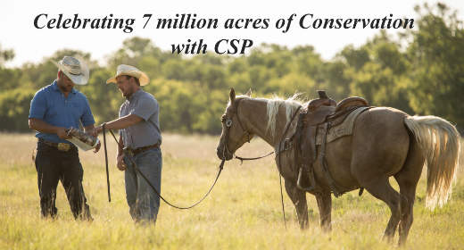 celebrating 7 million acres of csp banner