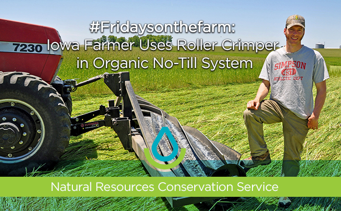 #Fridaysonthefarm: Iowa Farmer Uses Roller Crimper in Organic No-Till Cover