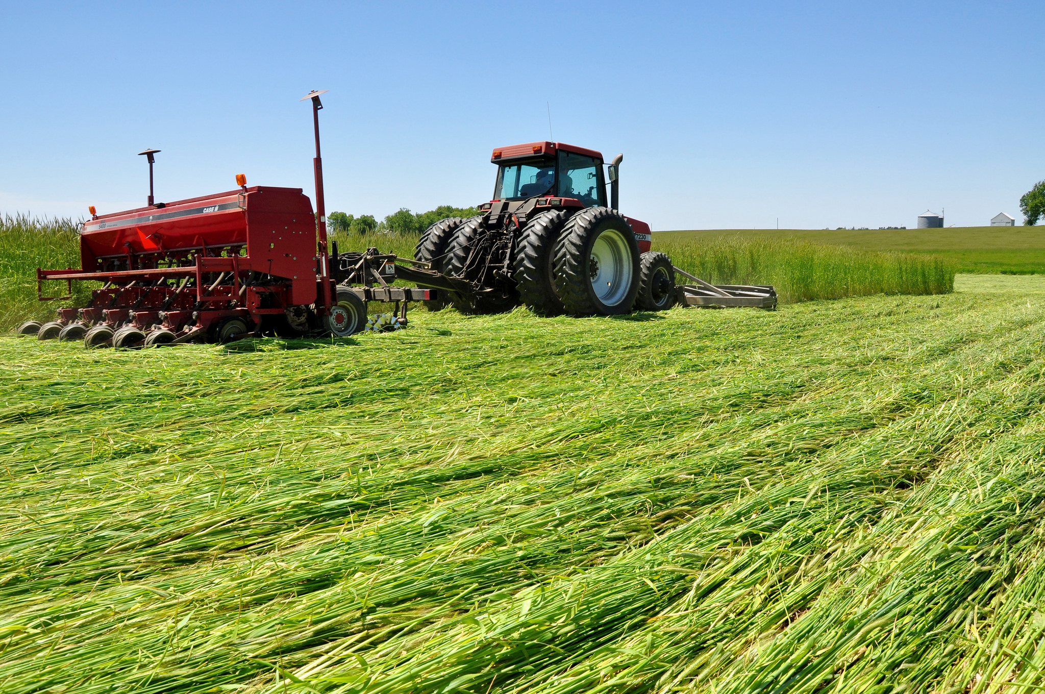 #Fridaysonthefarm: Iowa Farmer Uses Roller Crimper in Organic No-Till Photo 3