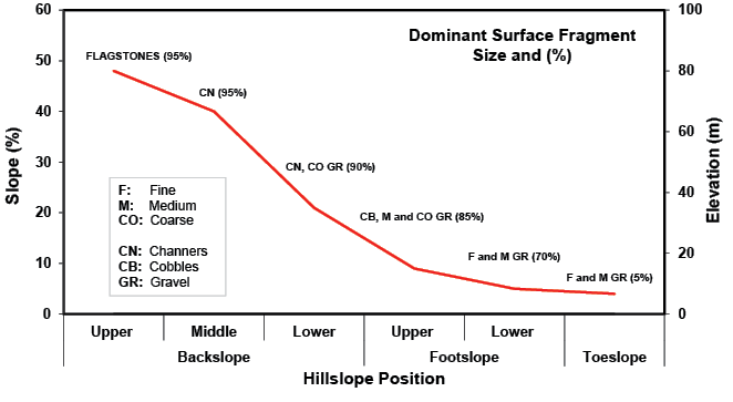 Figure 2-3. Diagram of the change in surface fragments along a transect of a scarp slope on a cuesta in Culbertson County, Texas.