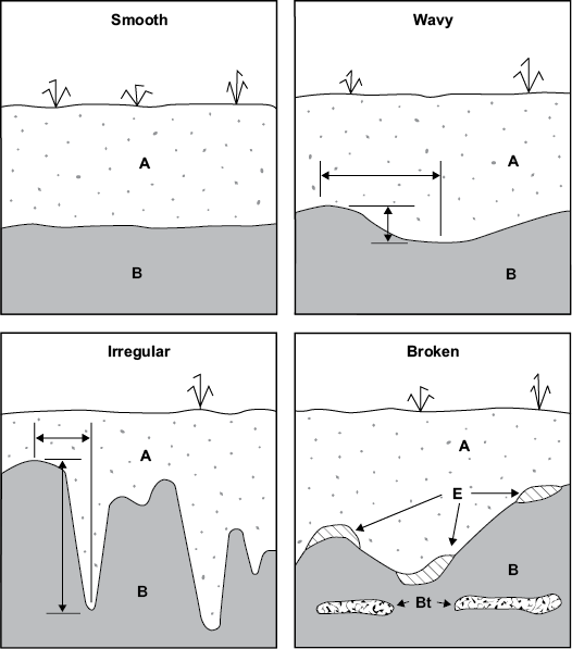 Figure 3-4. Examples of topography classes for horizon boundaries (adapted from Schoeneberger et al., 2012).