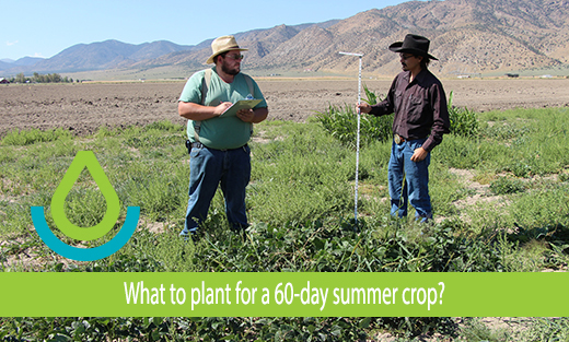 Click to view YouTube video by NV NRCS