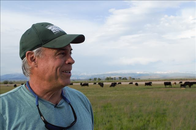 Mike Fenn with Wind Rivers and cattle in background by Brianna Randall