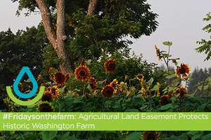 #Fridaysonthefarm: Agricultural Land Easement Protects Historic WA Farm - Thumb