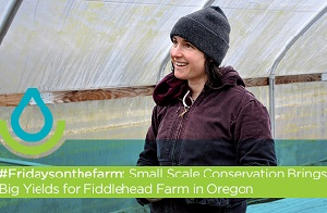 #Fridaysonthefarm: Small Scale Conservation Brings Big Yields Web Thumb